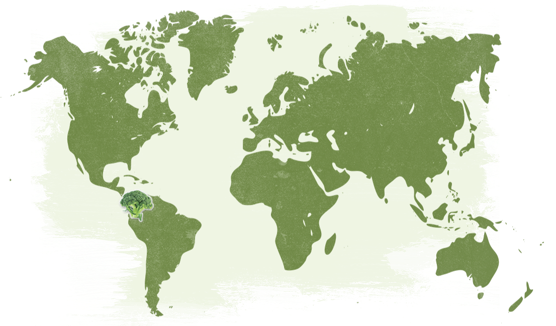 Map-Organic-Pesticide-Free-Broccoli-Florets_NatureTouch.png