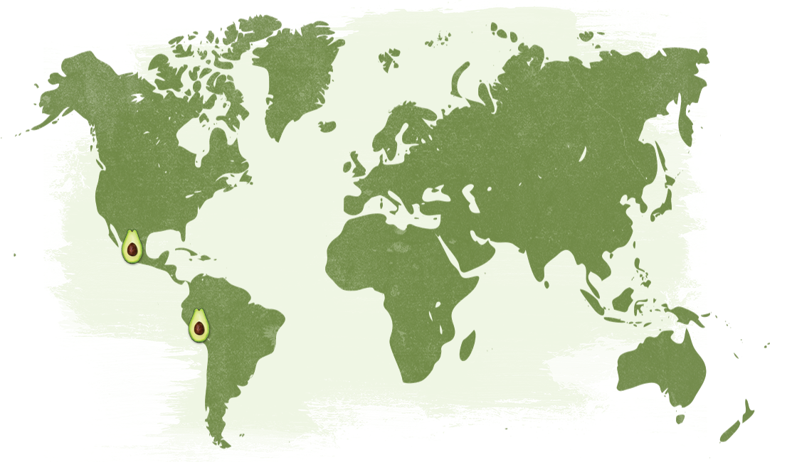 Map-Avocado_NatureTouch.png