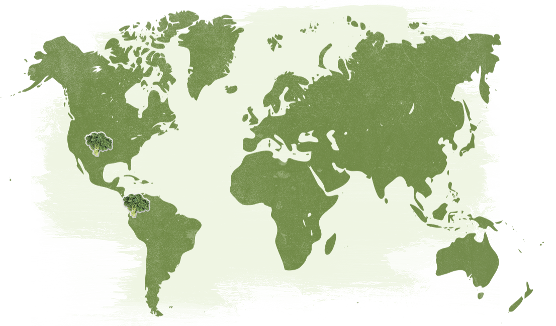 Map-Organic-Kale_NatureTouch.png