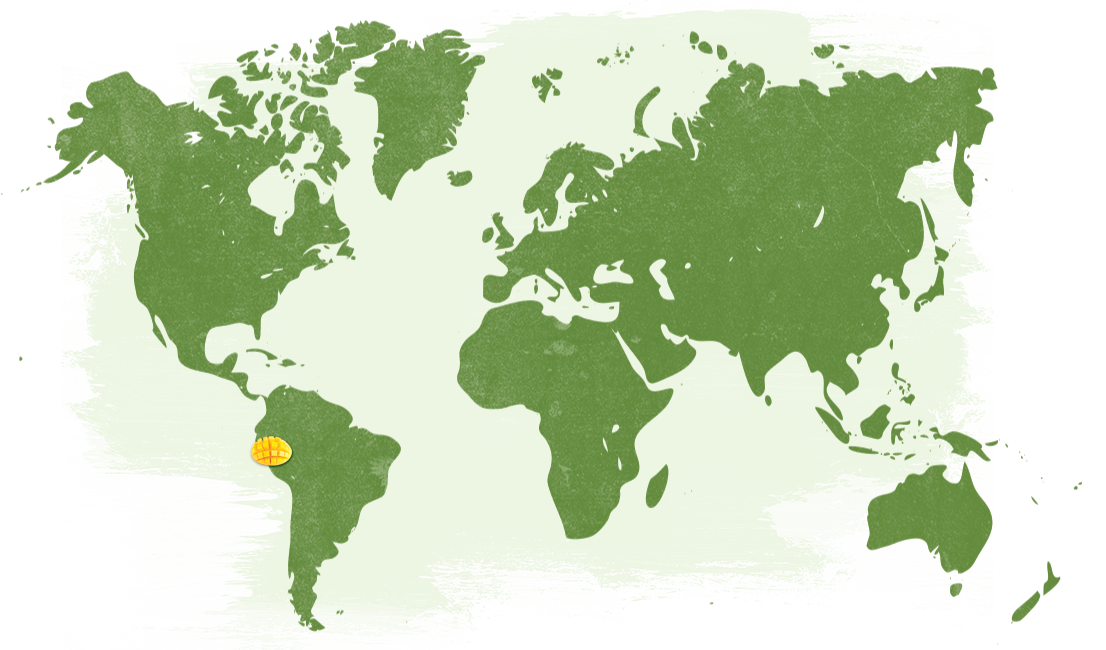 Map-Pesticide-Free-Mangoes---USA_NatureTouch.png