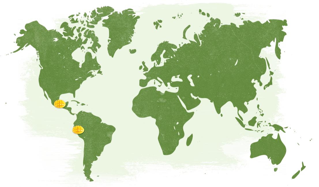 Map-Organic-Mangoes_NatureTouch.png